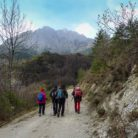 GRESOLET - PEDRAFORCA